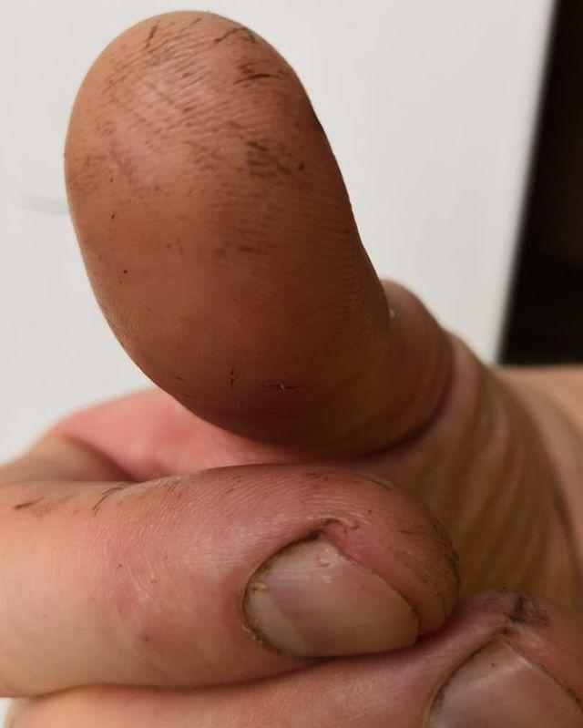 После недели работы в деревне смартфон не узнаёт отпечаток пальца
