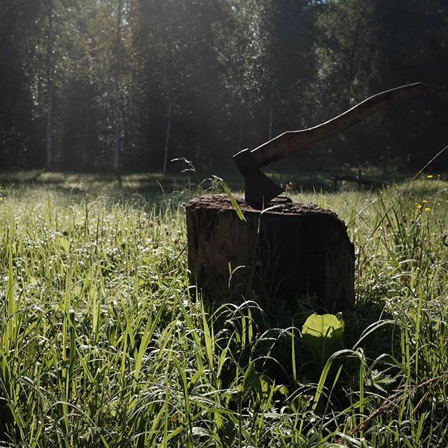 Старый топор на утренней заре