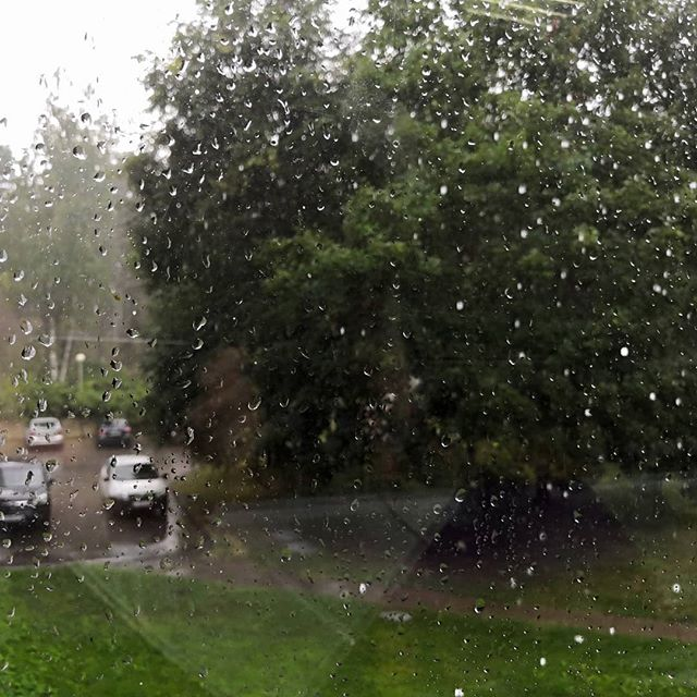 """Не думал, что когда-то скажу: """"Слава богу! Идёт дождь! """""""