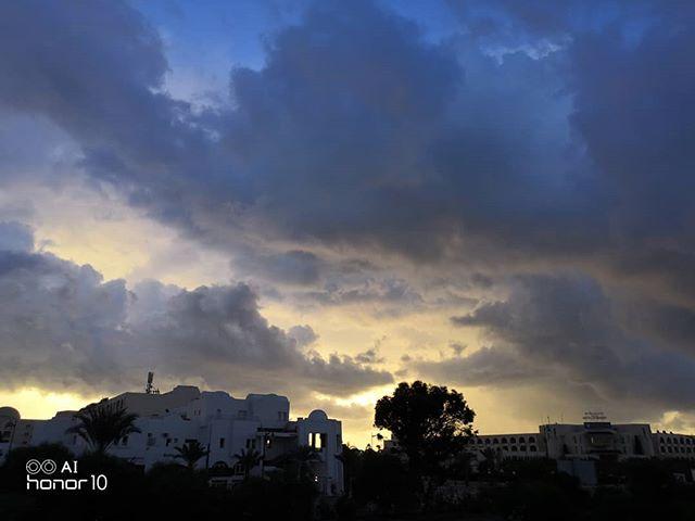 Доброе утро, Хаммамет @hotelzodiachammamet #tunisia #hammamet #тунис #хаммамет