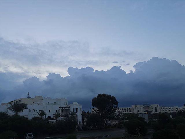 Утро седьмого дня. @hotelzodiachammamet  #hammamet #tunisia #morning #хаммамет #тунис #утро #хмуроеутро