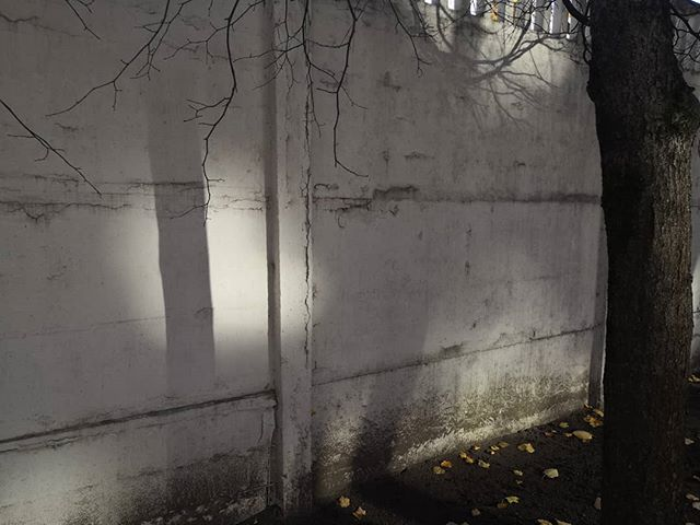 Стены и тени #осень #псков #тени #pskov #shadows