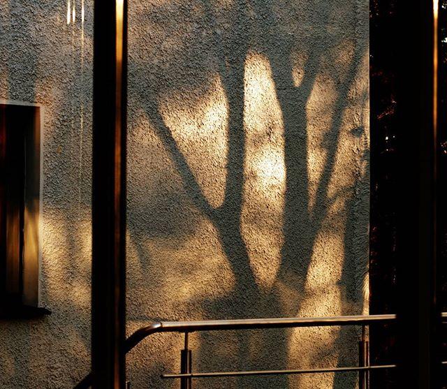 Стены и тени #тени #shadows