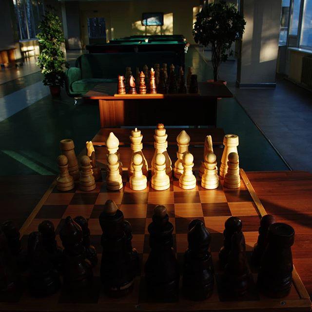 #шахматы #светитень